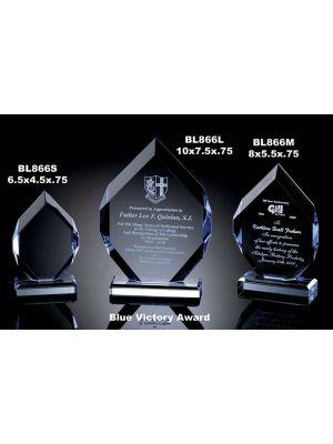 Blue Victory Award